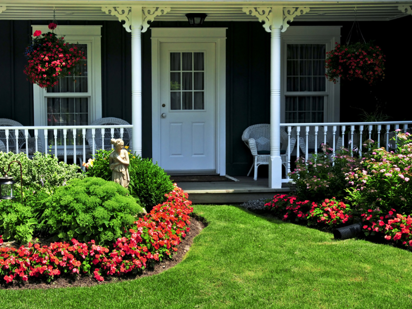 Want to Give Your Yard a Whole New Look?